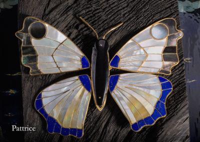 le papillon F.